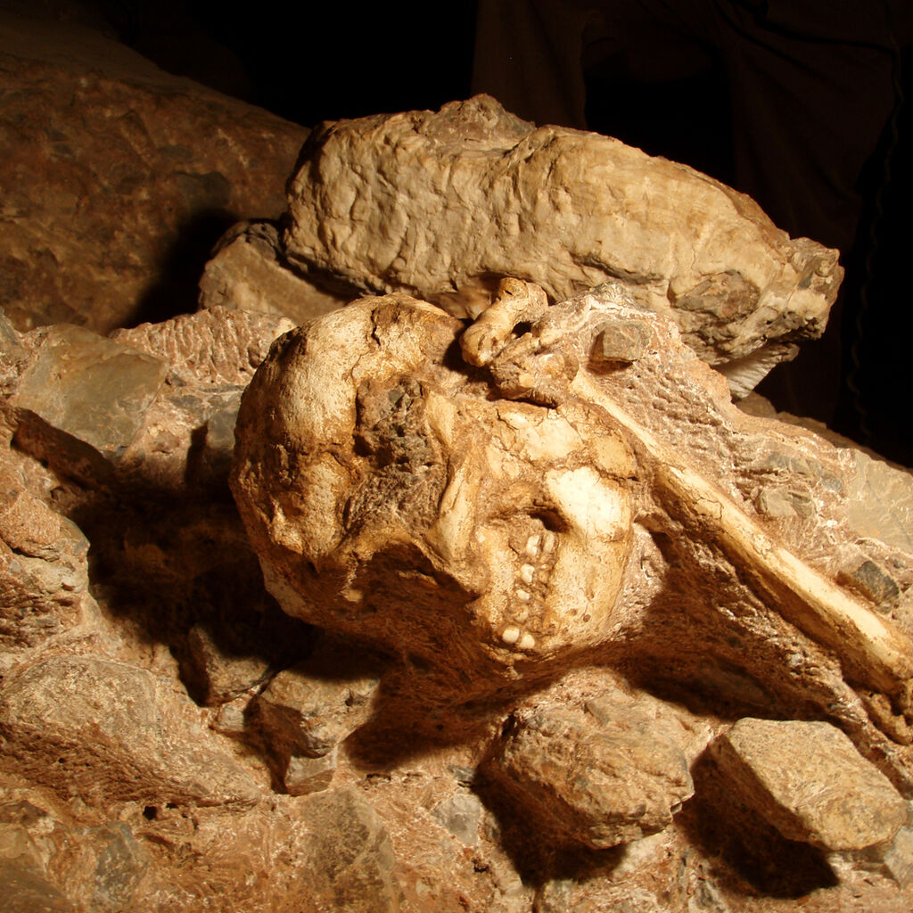 Little Foot In The Sterkfontein Cave